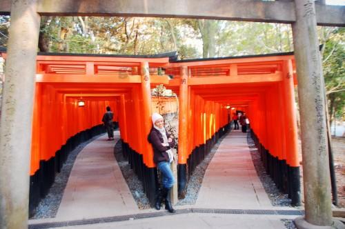 Senbon torii (Thousands of torii gates)