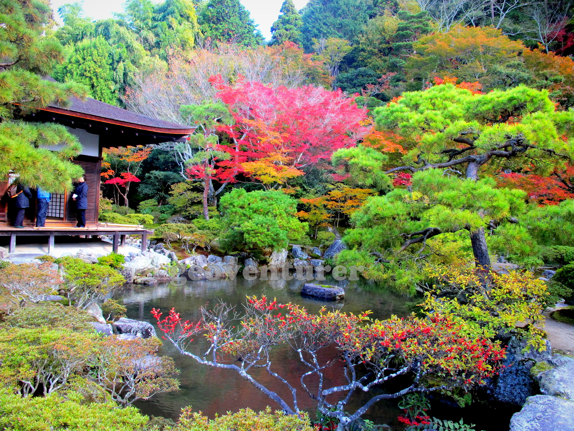 Colorful Kyoto My Top 5 Must See Places The Mis