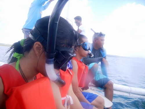 Waiting for the whale sharks