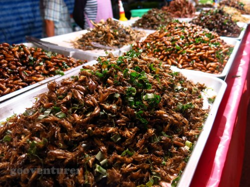 Fried roaches, anyone?