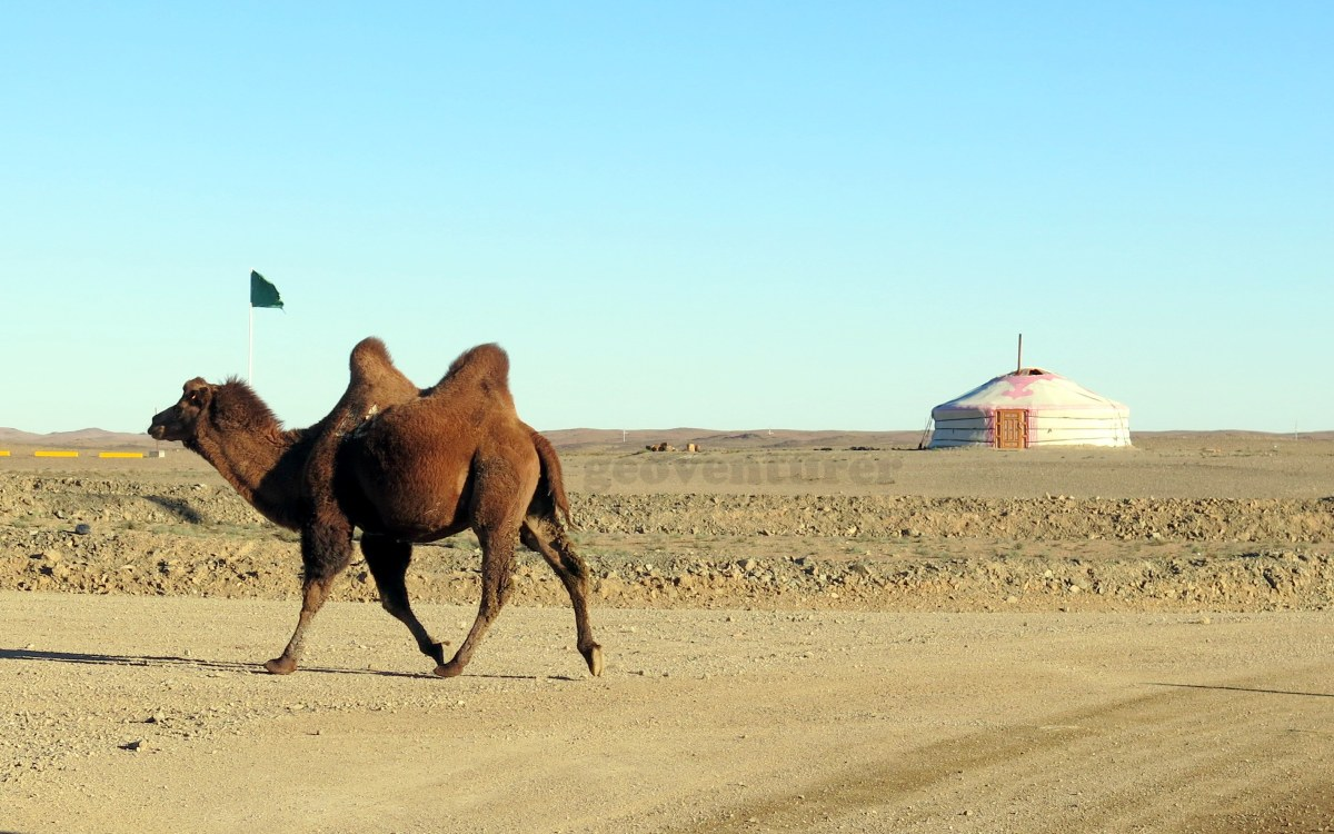 Of Mongolian nomads and mineral hunts: my Gobi desert encounter